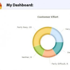 Capture-dashb - PeoplePulse™ - Online Survey Software