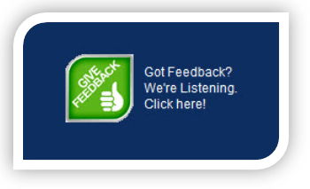 Website Feedback Surveys