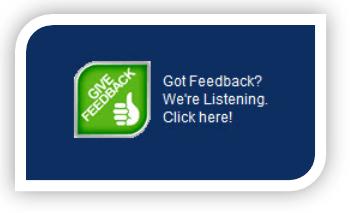 Website Feedback Surveys